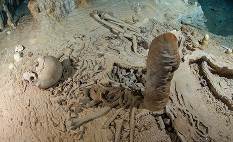 Prehistoric human skeleton in the Chan Hol Cave near Tulúm on the Yucatán peni