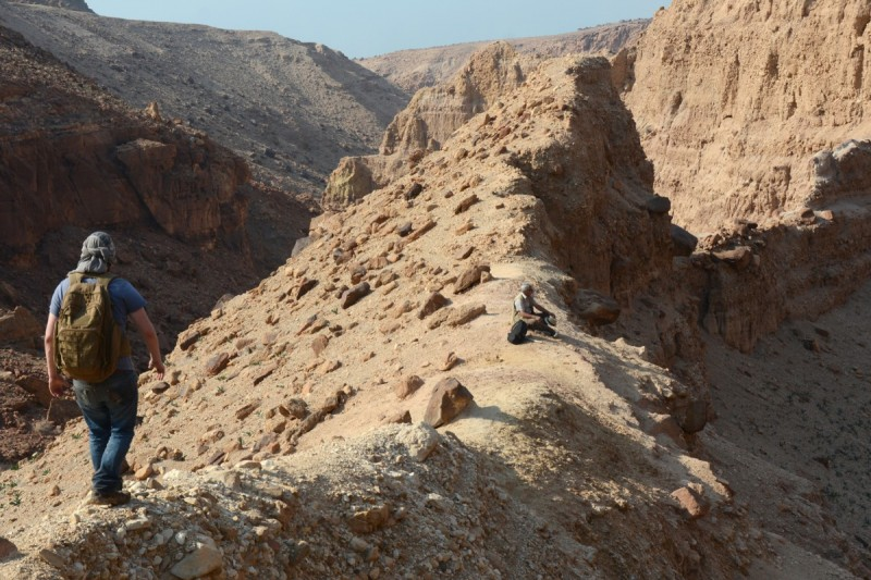 Some of the fossil localities lie a long and strenuous hike up the wadis that cu