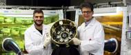 New solar cells for space