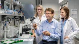 Dirk Haller and his team found out that it is not cell stress alone that leads t